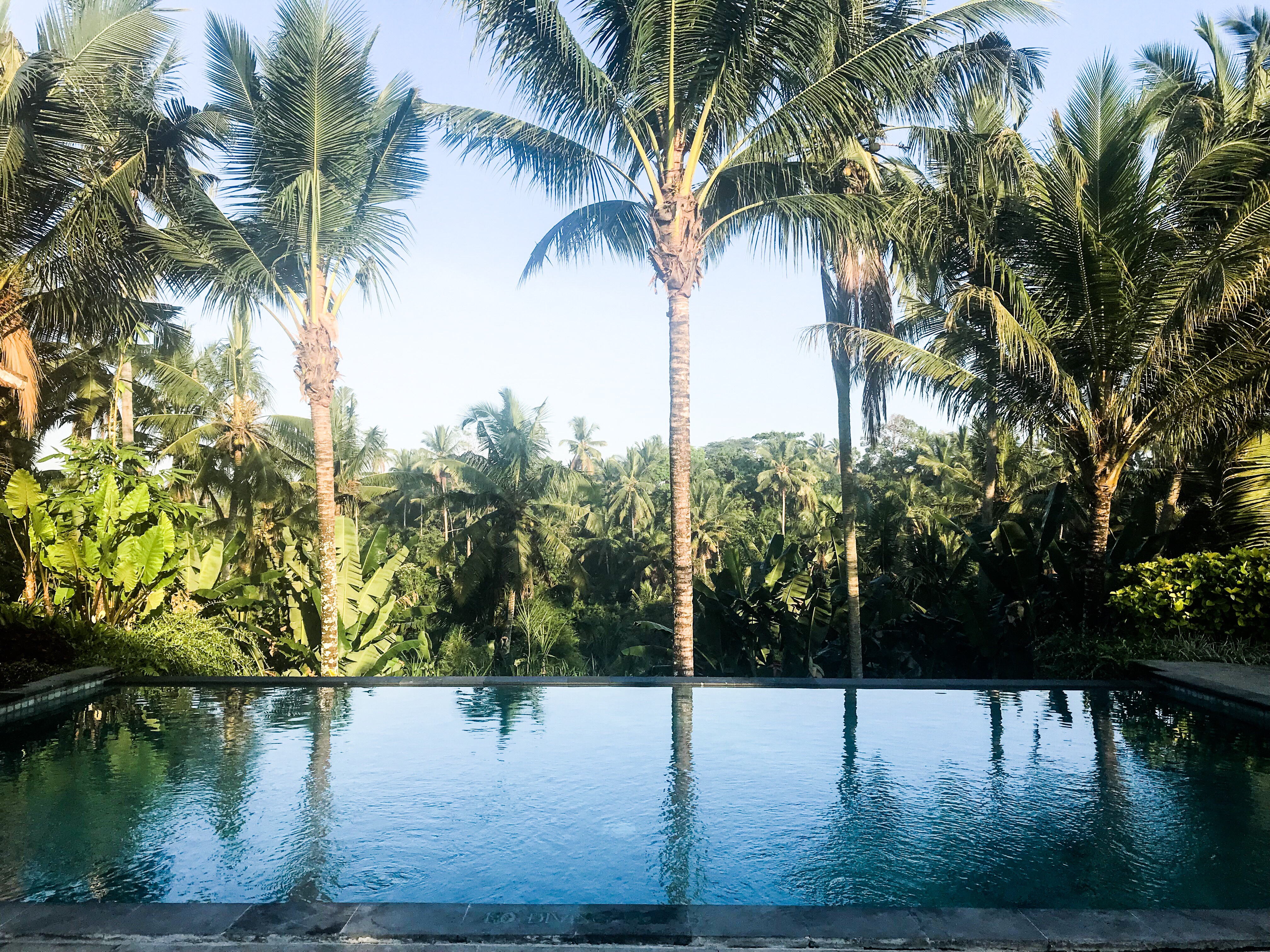 Our first couple of days in Bali